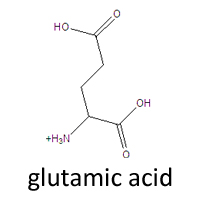 R Glutamic Acid Structure LABTOP | CSMATE | COLO...