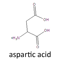 l aspartic acid  Aspartic acid, Asp, D